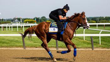 150th Belmont Stakes Previews
